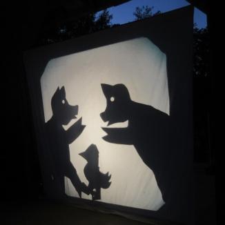 shadow8